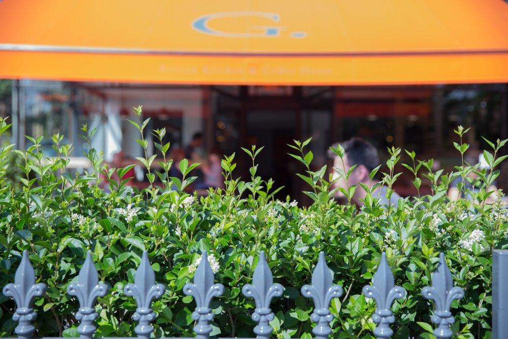 Cafe G 4.jpg