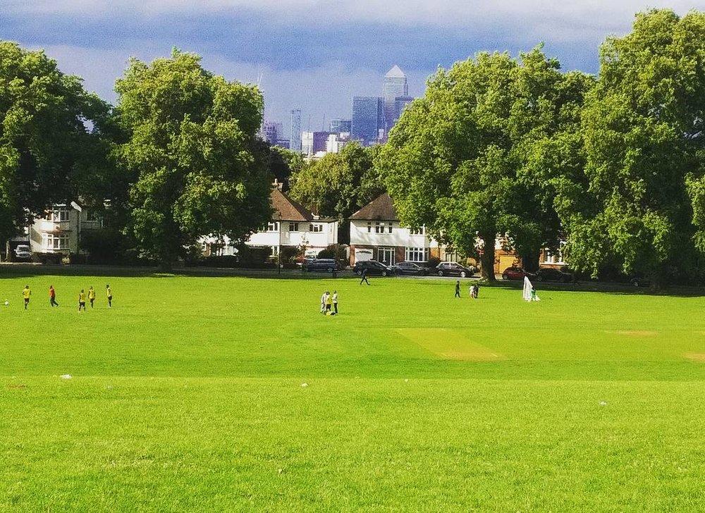 Hilly Fields 3.jpg