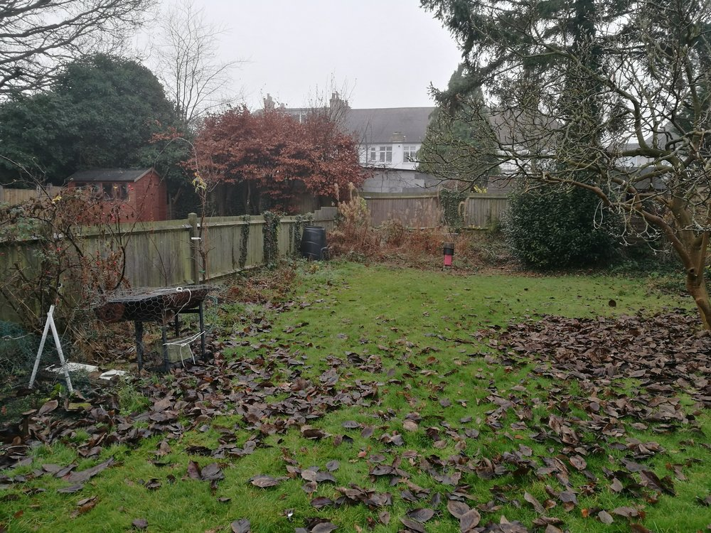 N E Gardencare Landscaping and Gardening in South East London Club Card 4.jpg