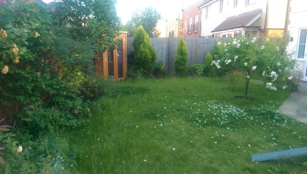 N E Gardencare Landscaping and Gardening in South East London Club Card 10.jpg
