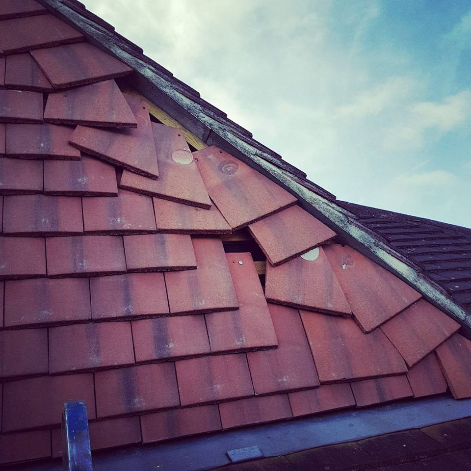 DLong Roofing and Renovations Roofers in South London Club Card .jpg
