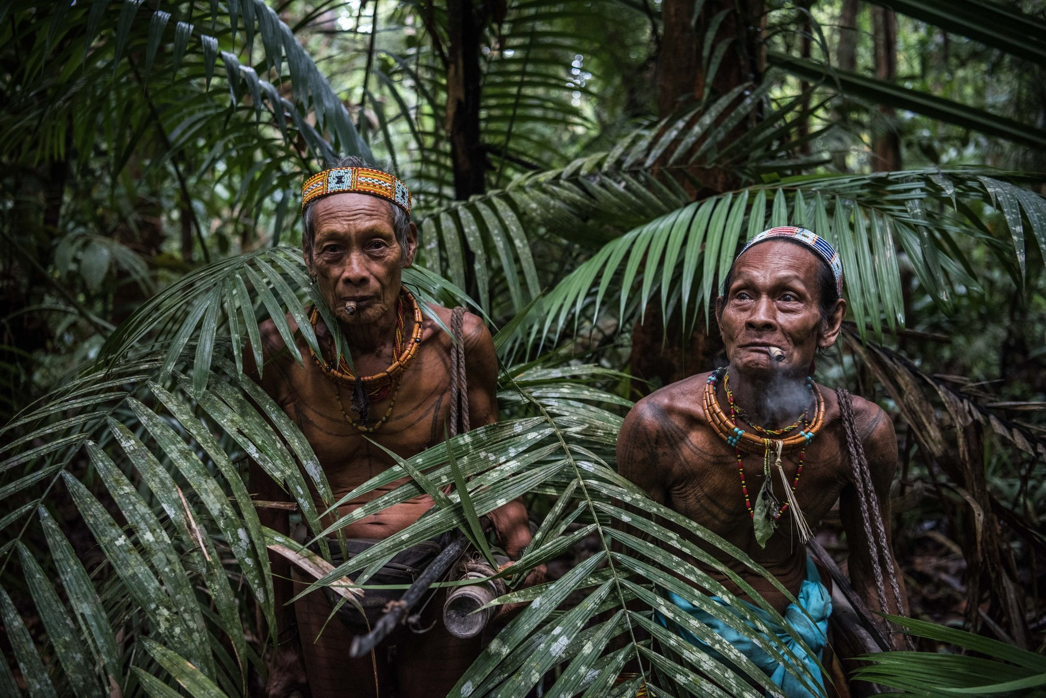 an ancient indonesian tribe clings to its ways the story bar