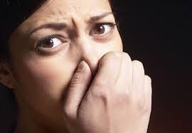 Bad Breath Science