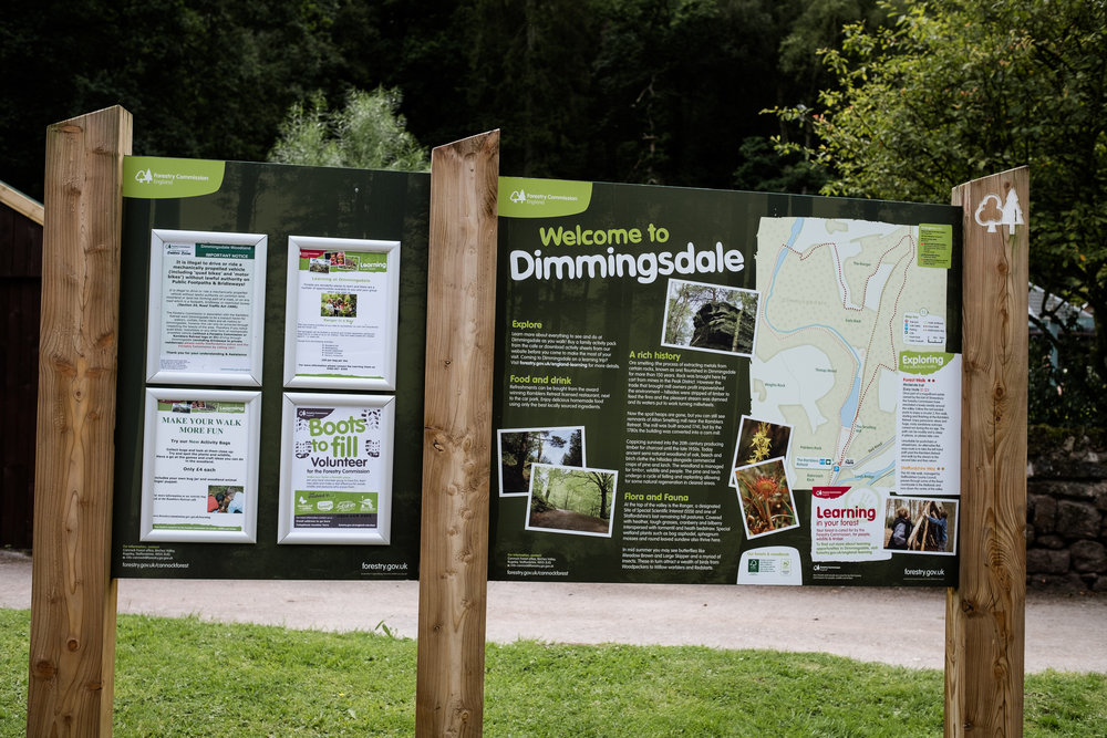 07.31.2016 Dimmingsdale Walk Photowalk Staffordshire Ramblers Retreat Trees-1.jpg
