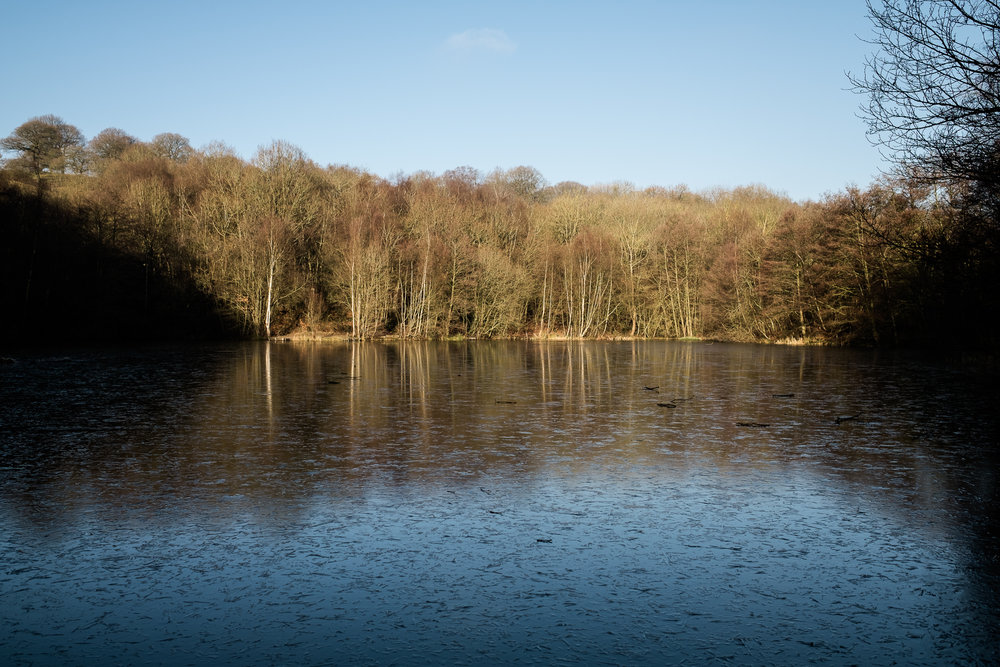 Staffordshire Photowalk Consall Forge Consall Nature Reserve The Black Lion Winter Cold Frosty-15.jpg