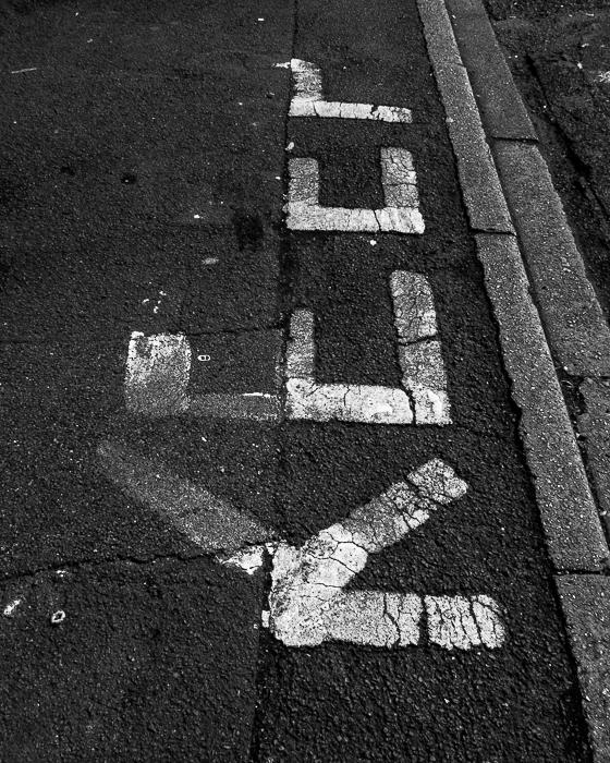 secretwalk4.jpg