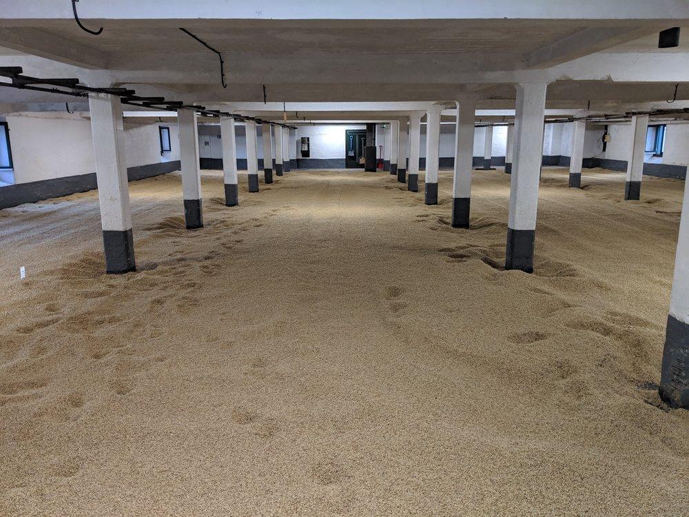 Laphroaig still floor malts 10-15% of their barley.