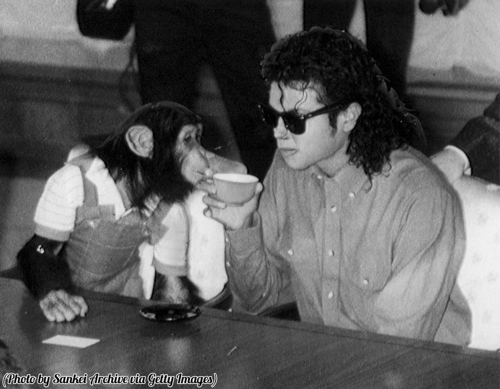 Michael Jackson and monkey.jpg