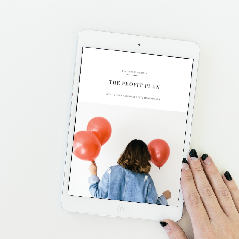 The Profit Plan - How to turn your business into a moneymaker