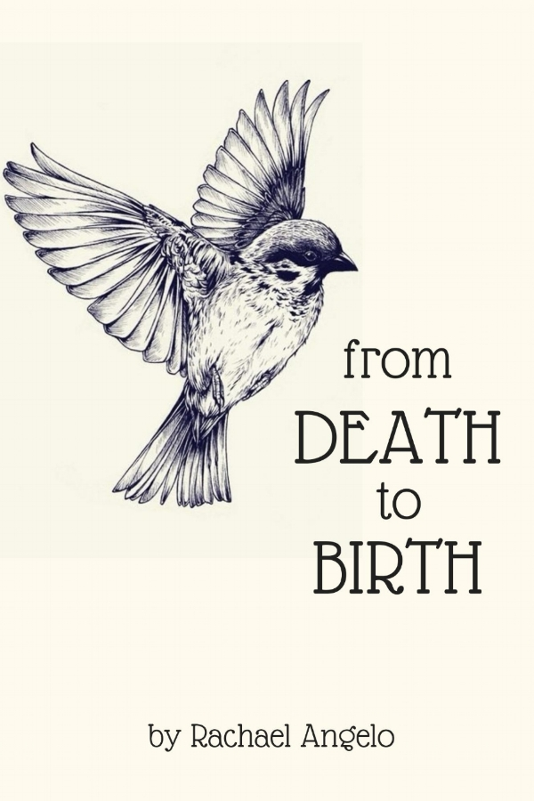 Death_to_Birth_Cover_for_Kindle.jpg