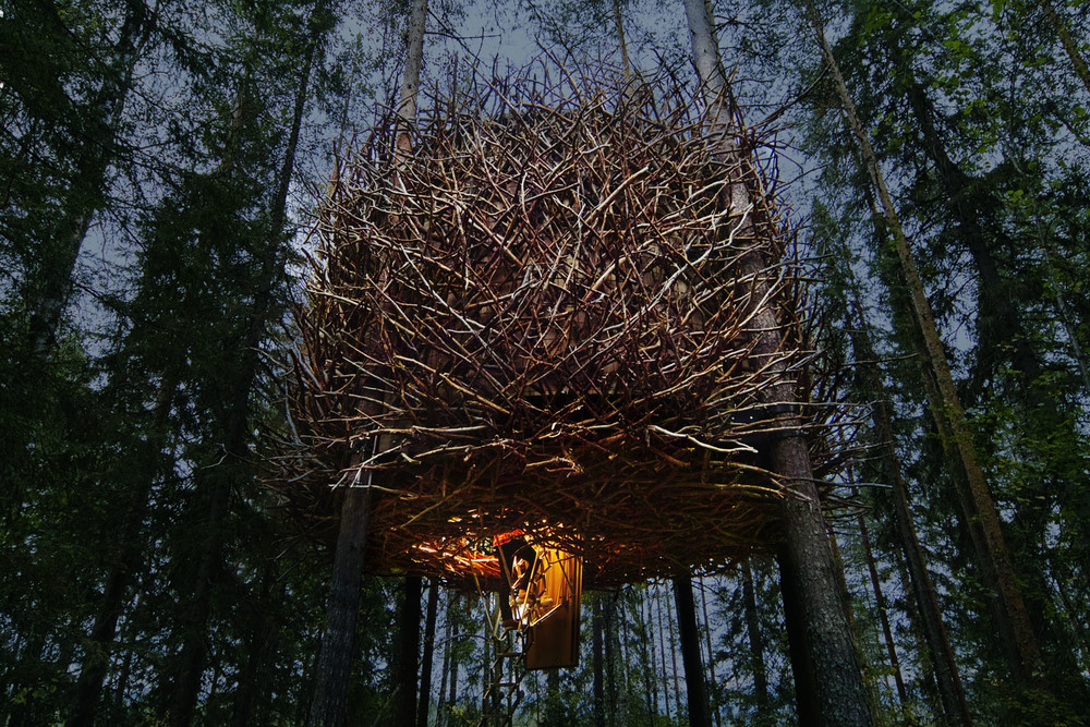 3.Treehotel-Here & Away.jpg
