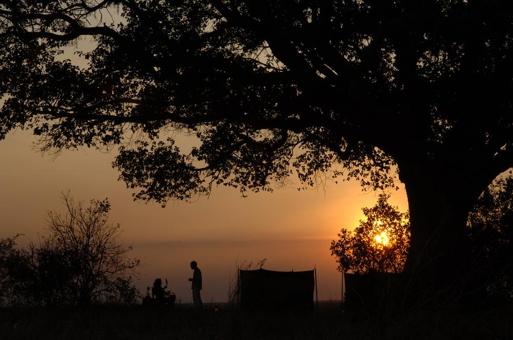 2.Chada Katavi-Here & Away.jpg