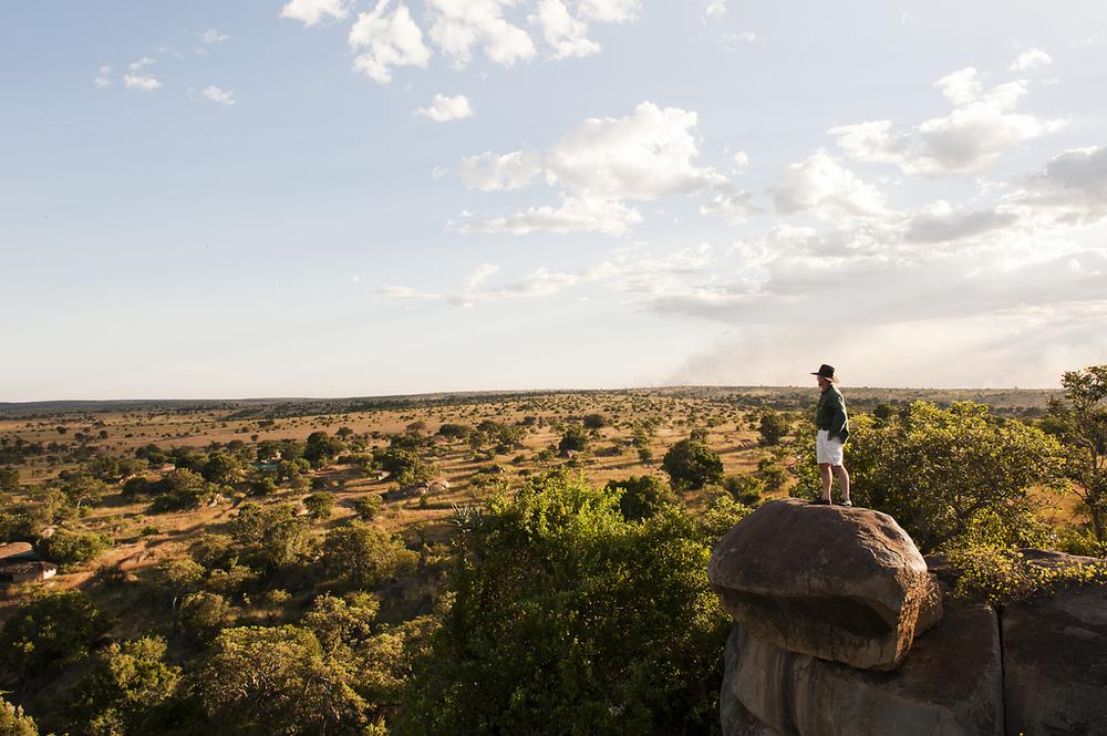 5.Lamai Serengeti-Here & Away.jpg