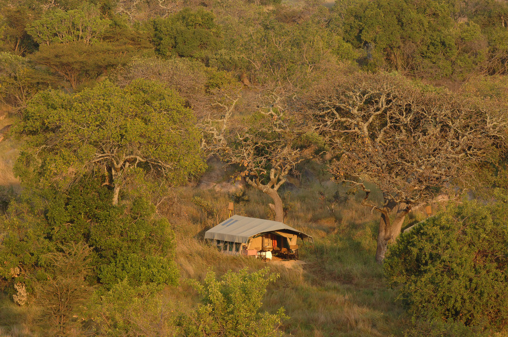 1.Serengeti Safari Camp-Here & Away.jpg