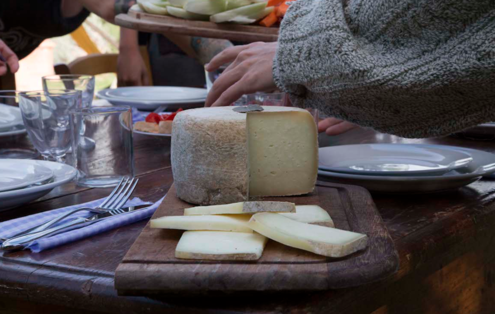 Local cheese, the perfect addition to Chianti wine