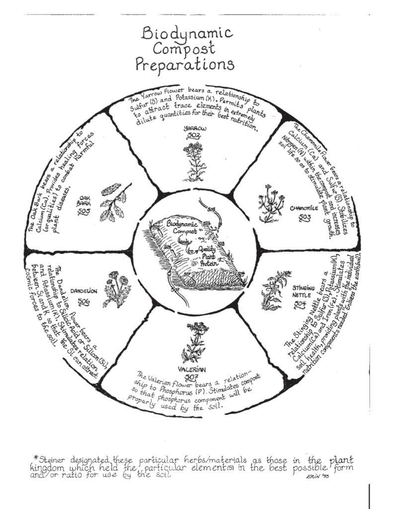 BiodynamicPreparationsWheel-copy-1-791x1024.jpg