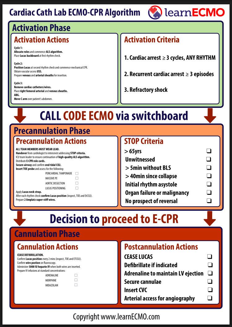 Cath Lab ECPR algorithm.JPG