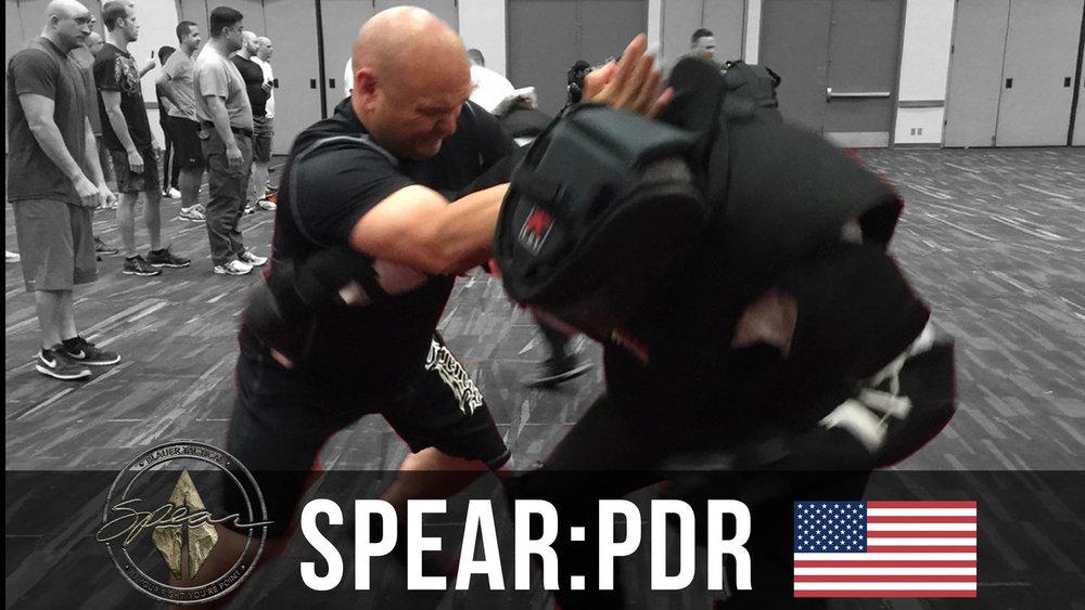 PDR USA Squarespace Thumbnail.jpg