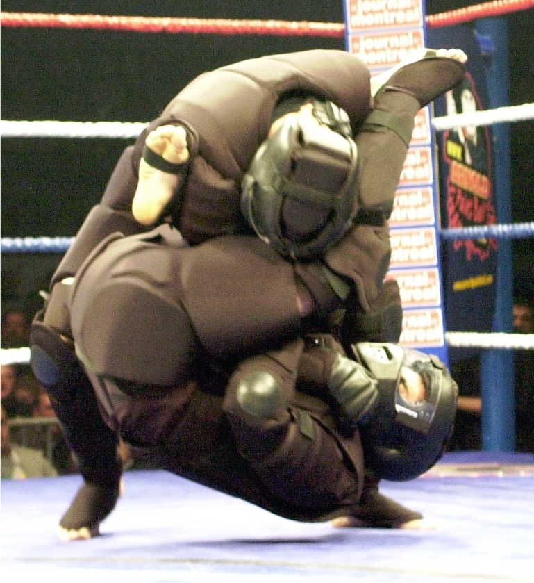 mma in high gear.jpeg