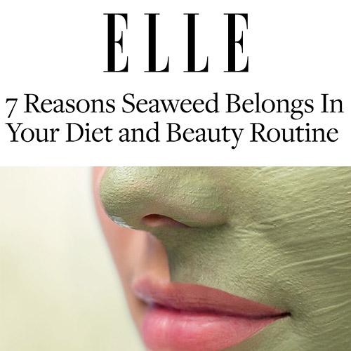 Elle - Featured on MSN Online