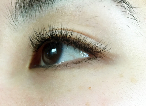 9b9dcbcab0c Gallery — Lashes by dee