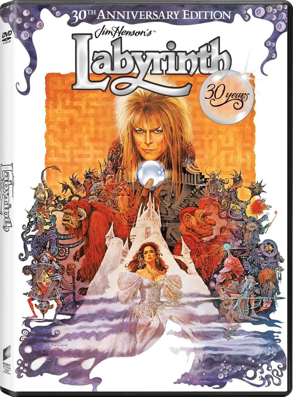 LABYRINTH_PCKSHT_3D_DVD[7].jpg