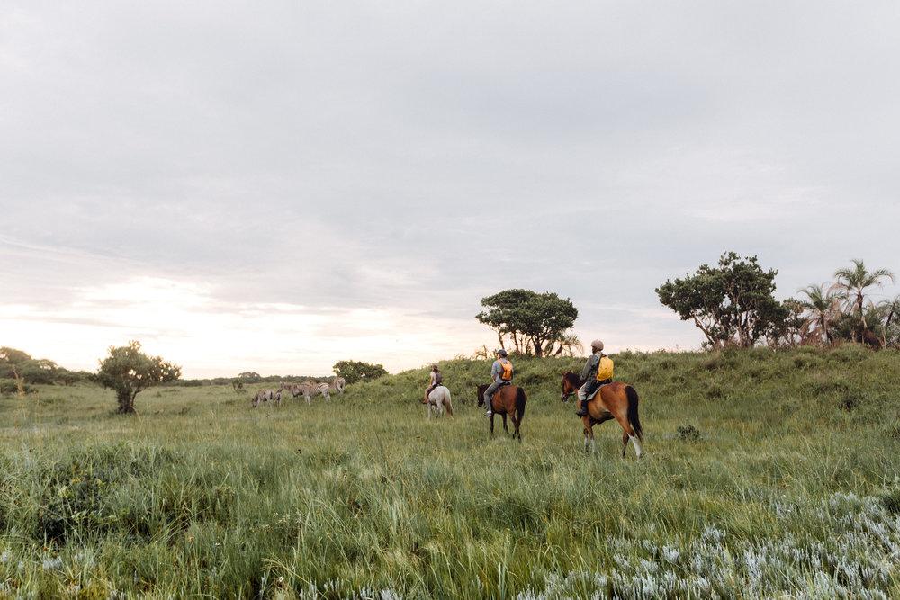 Wild Routes Horseback Safari Durban Tour 3.jpg