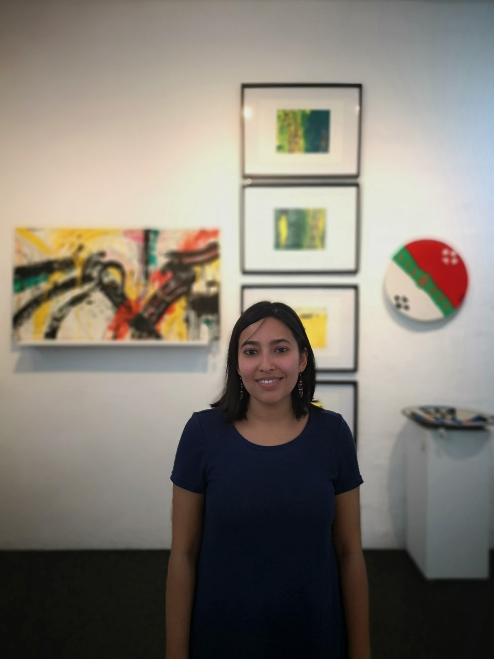 Sumayya Menezes   Specialist Speaker at KZNSA Gallery