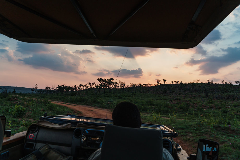 Hluhluwe Overnight Safari.jpeg