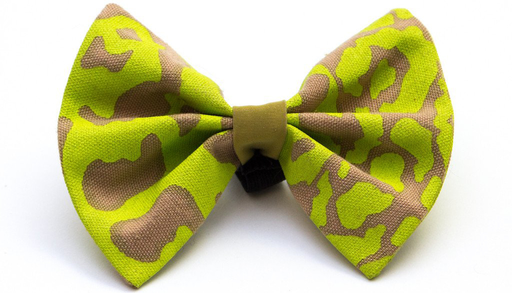 Hiro will never go out without a bowtie on as he likes to look smart and proper! His current faves are neon leopard and Kiwi Shweshwe (£15)