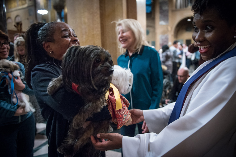 Baby Cici and her owner were so honoured to be blessed by Reverend Leslie Houseworth-Fields, who also seemed so honoured to meet Baby Cici. (All photos and copyright: Tiffany Hagler-Geard)