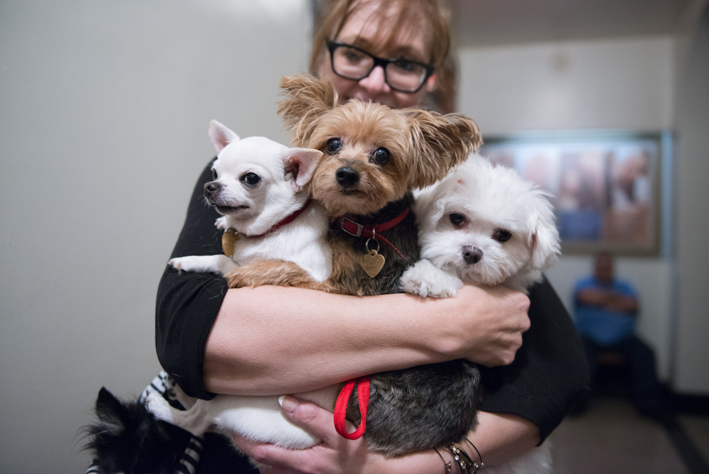 Many happy returns for these three rescues from the HSNY: Grover, Darla and Baby Dumpling attended the blessing for the third time.