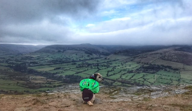 Toby is overlooking the beautiful Peak District (all photographs: Jess Martin)