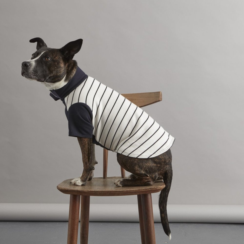 Lacy is looking quite fetching in the striped sweater