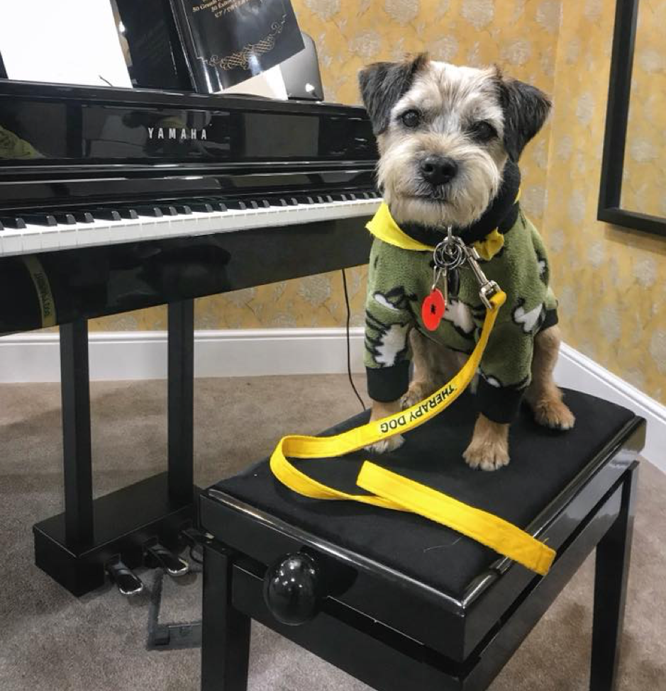 Toby is so talented he could probably play the piano as well