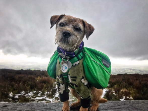 Toby braved snow and wind, safe in the knowledge there would be a pub lunch at the end of this adventure