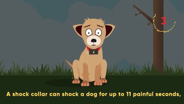 A still from Dogs Trust's campaign video