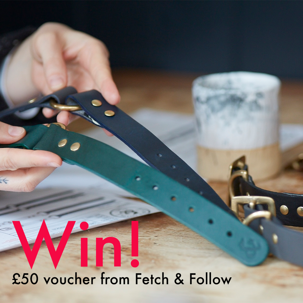 Sign up to our newsletter by May 9, midnight GMT, for your chance to win a £50 gift voucher from Fetch & Follow!