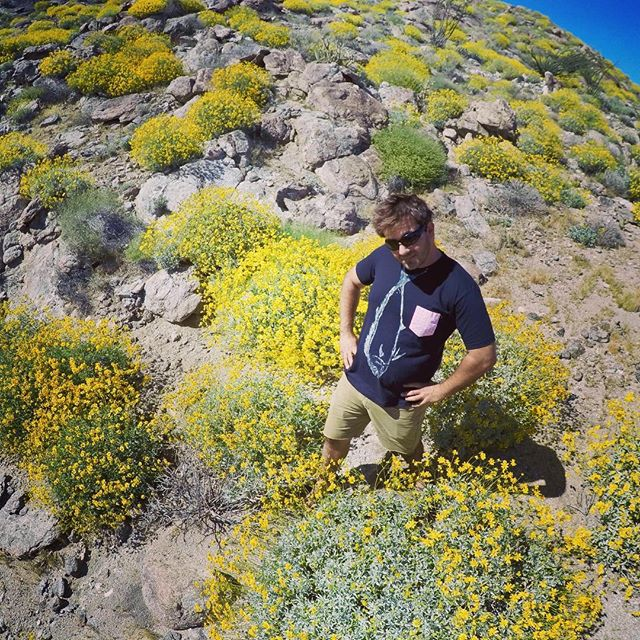 High fashion in the desert.  Don't act like you're not impressed.  #fishtiet #casuallyclassy #anzaborrego #superbloom #wildflowers #tompetty #gyotaku #art #wearableart #zoolander #bluesteal #desert #california #mahimahi #dorado #aloha #alohasignature