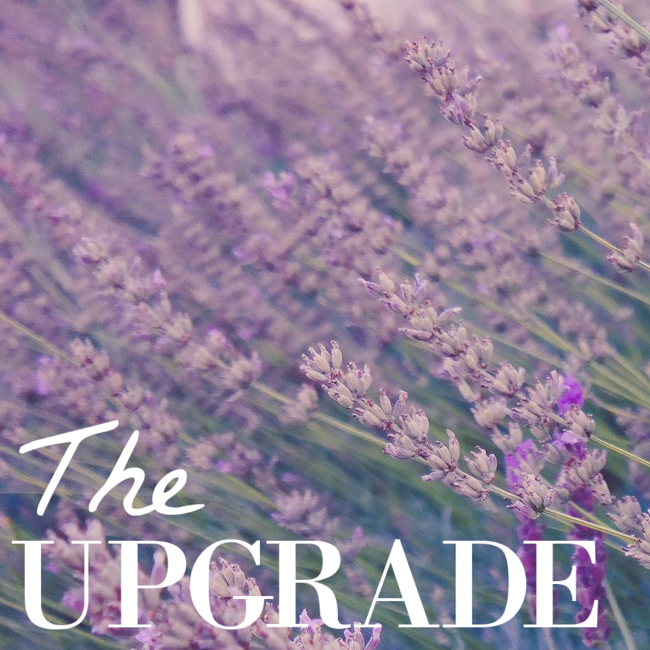 the upgrade square.png