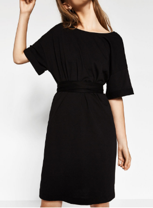 Zara Dress 1.png