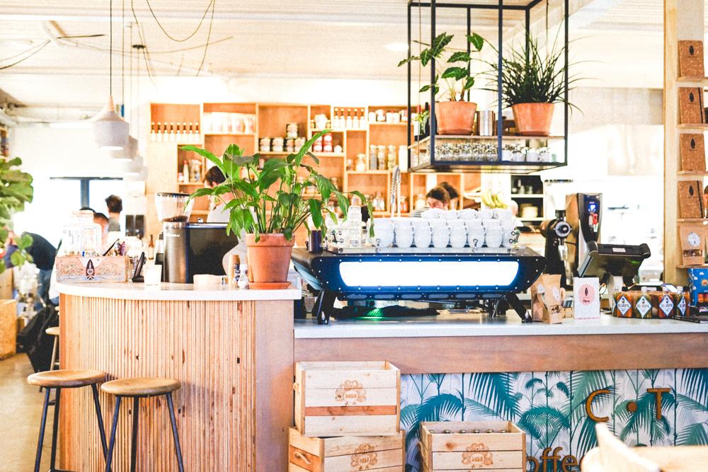 Coffee & Coconuts || Amsterdam