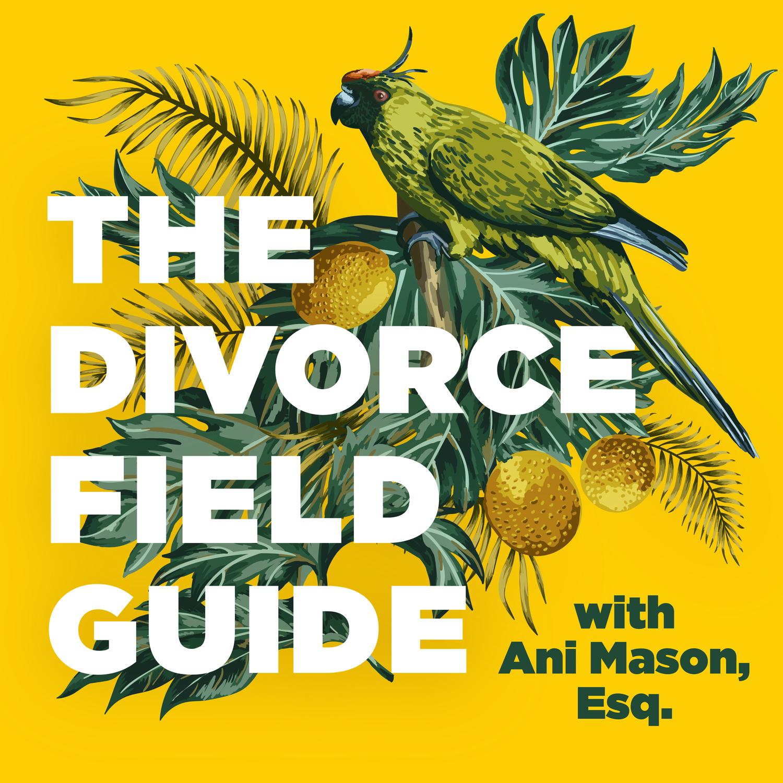 Brutal divorce tactics