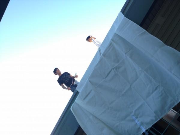 Ikea Dyning Canopy Shade