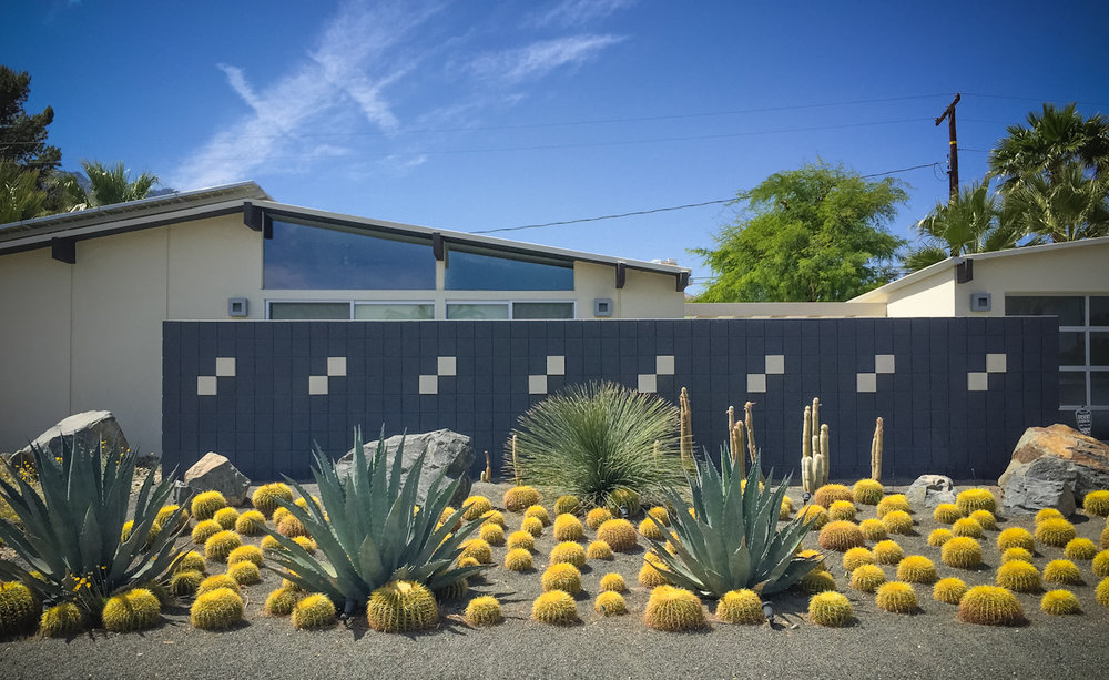 Colorful desert landscape in Palm Springs. - Desert-Inspired Mid-Century Modern Landscape: Our Big Yard Reveal