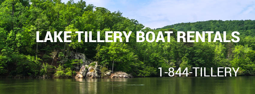 Lake-Tillery-water-food-eat-boat-rental-marina.png