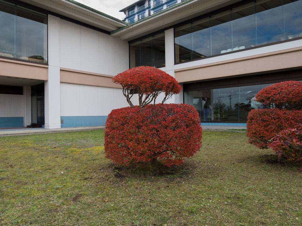 Shion Ryokan-3.jpg