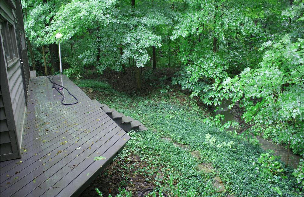 Woodland Restoration Zone A_edge