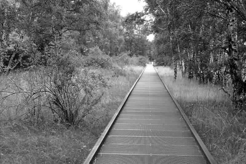 grate bridge.jpg
