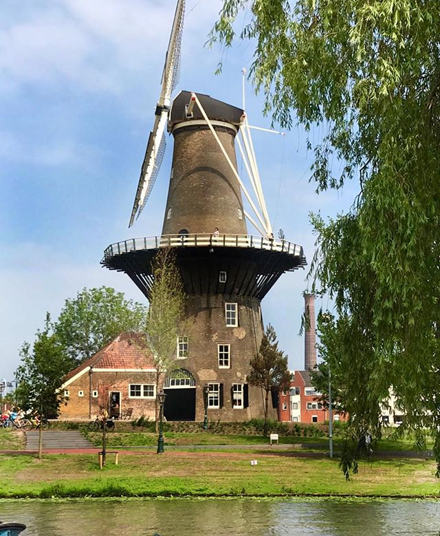 Leiden,  Netherlands 🇳🇱 Authentic Windmill. A very quaint town to visit by train. #foodandwine #adventure #events #travel